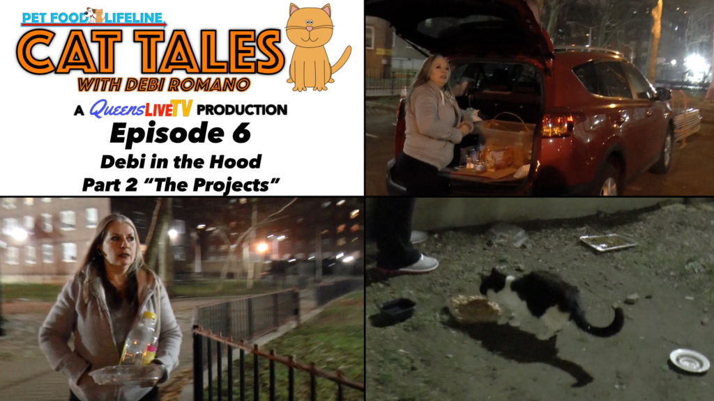 "Cat Tales: Episode 6 – Debi in the Hood Part 2 – ""The Projects"""